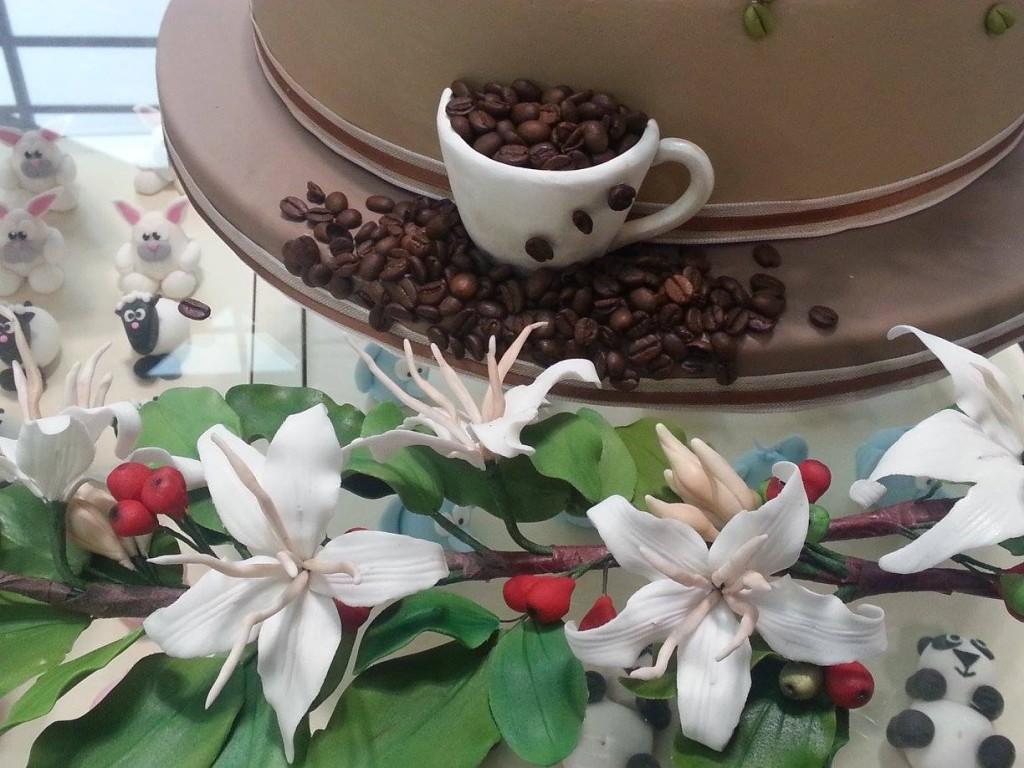 Fiori e drupe su un ramo di caffè...di zucchero!