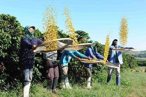 """""""BARISTA & FARMER"""", IN BRASILE PER LA TERZA EDIZIONE DEL COFFEE REALITY SHOW"""