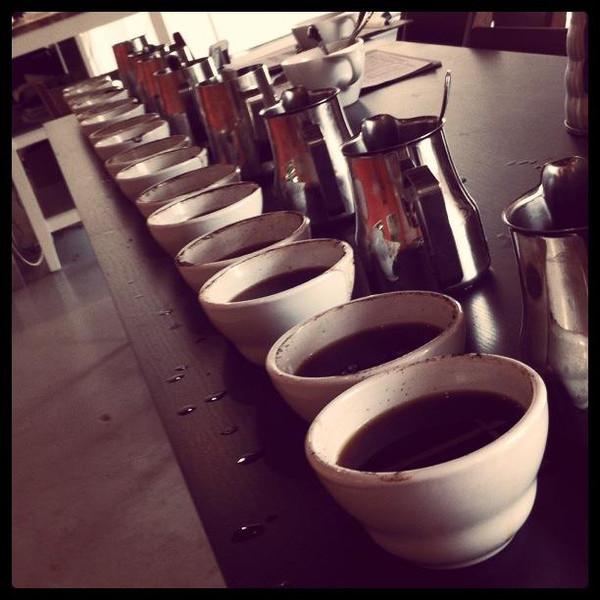 CORSO FULL IMMERSION DI ASSAGGIO E VALUTAZIONE PROFESSIONALE DEL CAFFÈ
