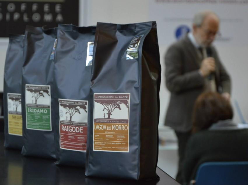 """IL NOSTRO ASSAGGIO DI DUE CAFFE' DI PIANTAGIONE, """"EL SALVADOR, FINCA SAN LUIS"""" E """"INDIA, RAGOIDE ESTATE"""""""