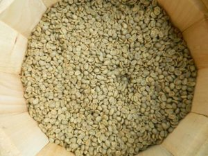 Jamaican_raw_coffee_beans_MB_15_large