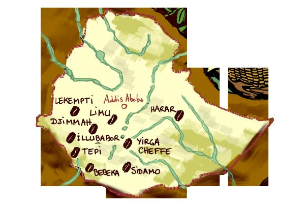 I CAFFE' ETIOPICI: LA MERAVIGLIA DELLA DIVERSITA'