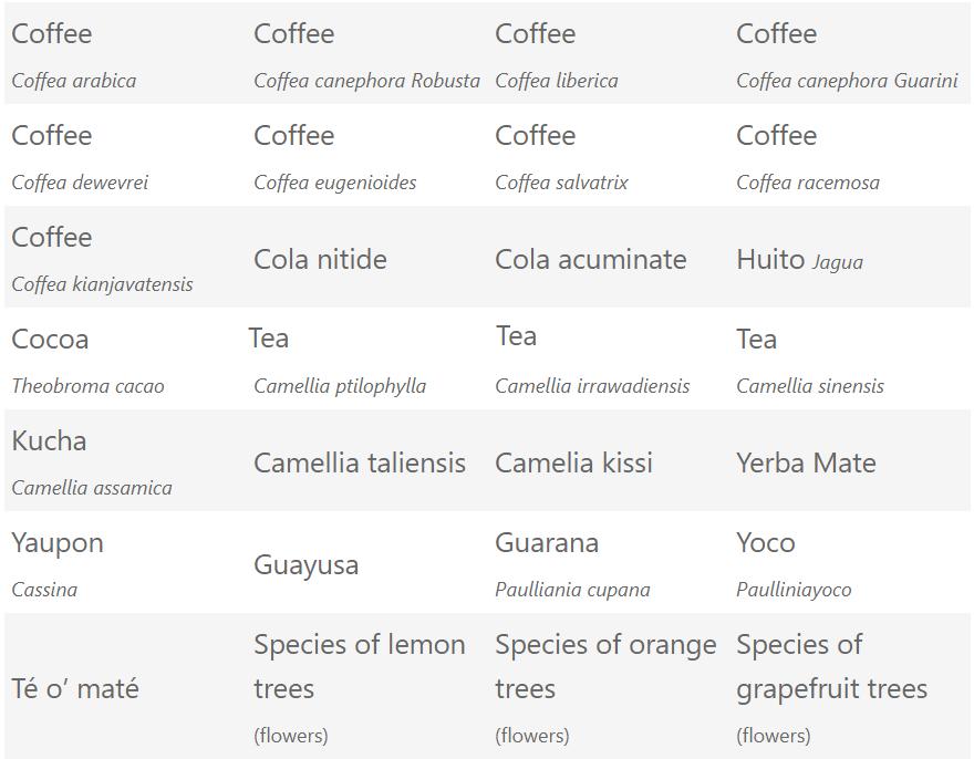 Piante che contengono caffeina