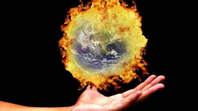 ENTRO IL 2050 DIMEZZATA LA SUPERFICIE COLTIVABILE DI VARIETÀ ARABICA