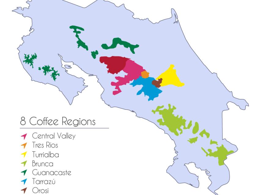 TUTTI I PAESI DEL CAFFE': IL COSTARICA