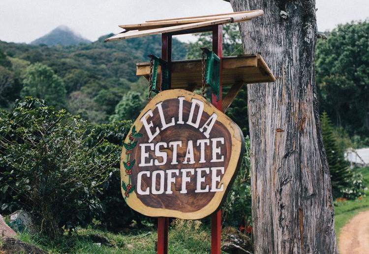 IL CAFFE' PIU' COSTOSO DEL MONDO