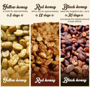 honey-coffee-blog3