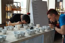 Cup Tasters