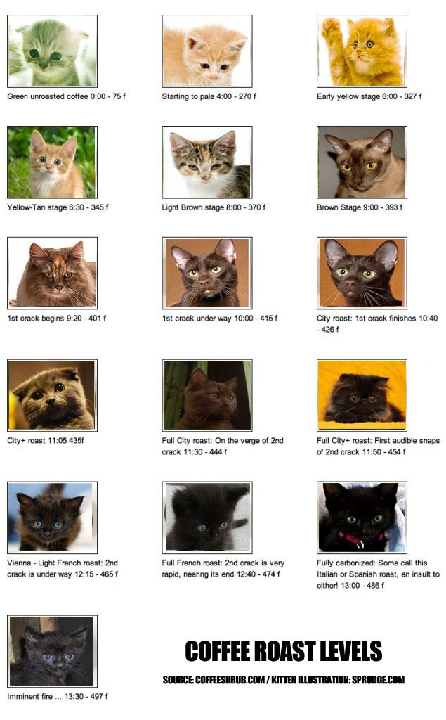 Profili di ....tostatura
