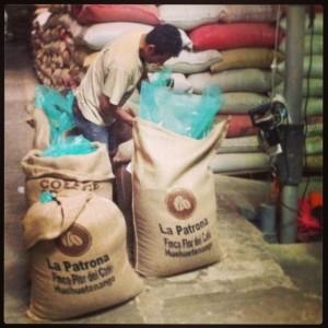 Grain Pro Bags