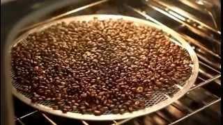 COME TOSTARE IL CAFFE' NEL FORNO DI CASA